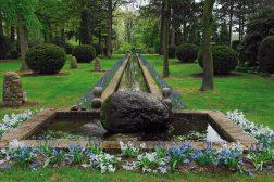 Park med vårblomstrende løk