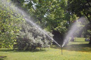 Vanning i hagen