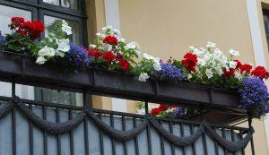 Balkongkasser i 17. mai-farger
