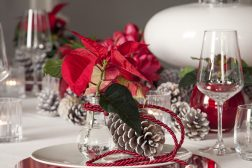 2013-decoration-07_red