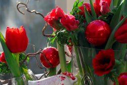 Juledekorasjon med løkblomster