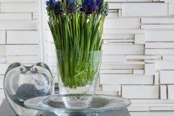 Perleblomst, Muscari, i vakre vaser