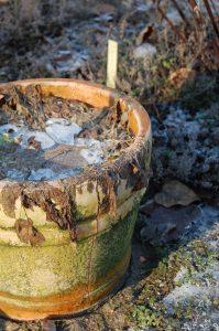 Frostsprengt krukke