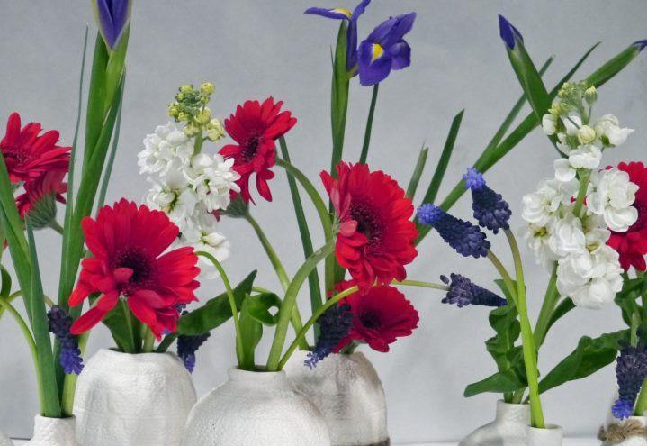 Vilt og vakkert, klar for 17. mai-festen