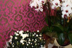 Asalea og orkide til høytidene