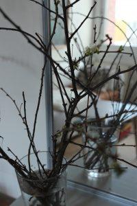 Grener i vase