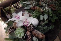Juledekorasjon med orkide