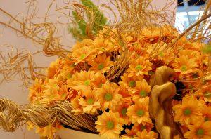 Krysantemum til halloween