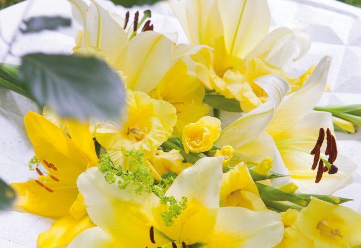 Gule liljer