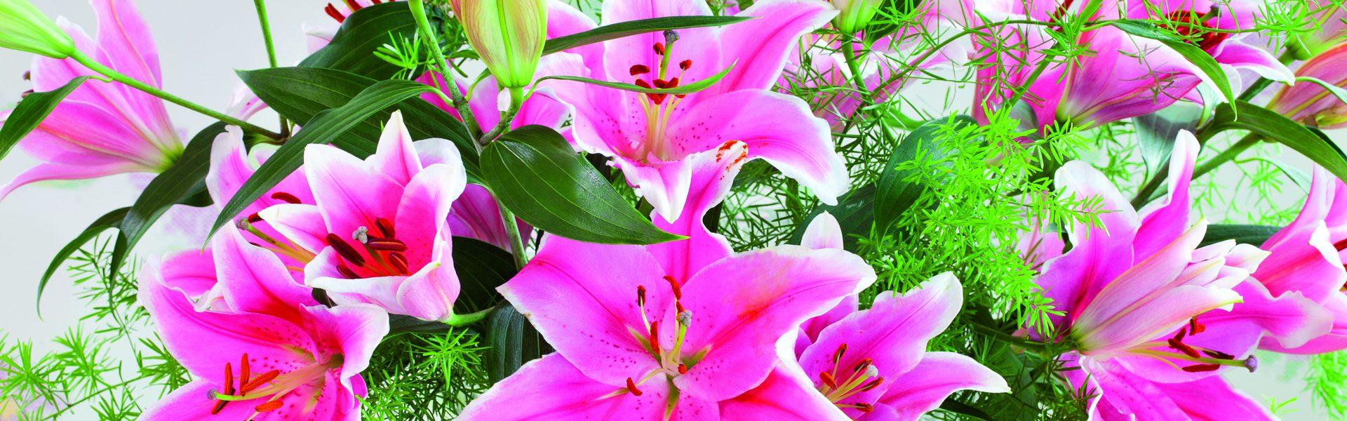 Lekne liljer i sommerbuketten