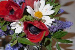 Blomster til 17.mai-feiringen
