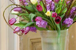 Vårblomstrende bukett med tulipaner, svibler og pil
