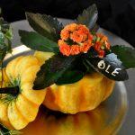 Gresskar og ildtopp som høstlig bordkort