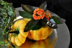 Gresskar og blomster til Halloween