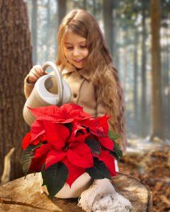 Jente vanner julestjerne