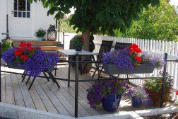 I juli skal hagen nytes!