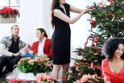 Julefeiring med julestjerne