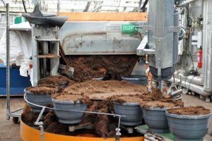Produksjon - pottemaskin som fyller jord i ampler
