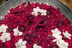 Blomsterblader i flytende dekorasjon