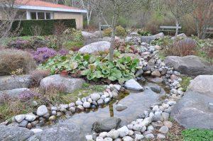steinbed og hagebekk