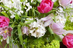 Bukett med tulipaner, tulipa, ruteliljer, fritillaria meleagris, svibel, hyacinth