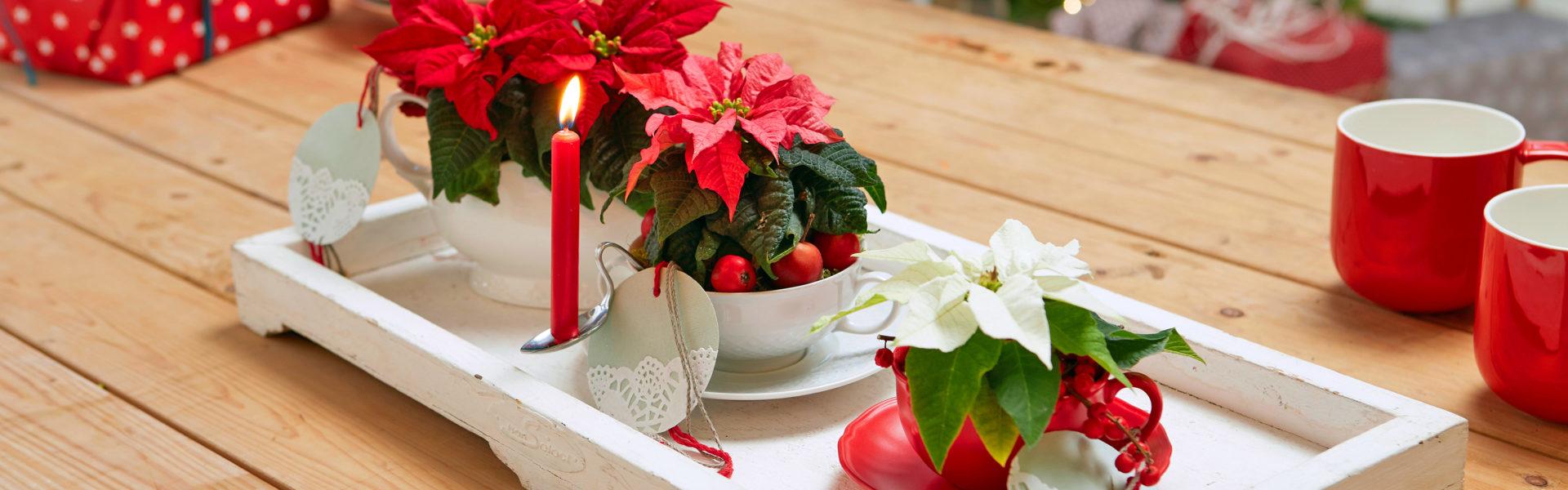 Juledekorasjoner på et brett