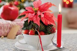 Borddekorasjon til julen, med julestjerner, ferdig