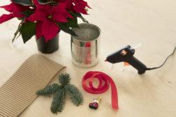 I-siste-lite-julegaven, lag en enkel blomsterpotte til julestjernegaven, trinn 1