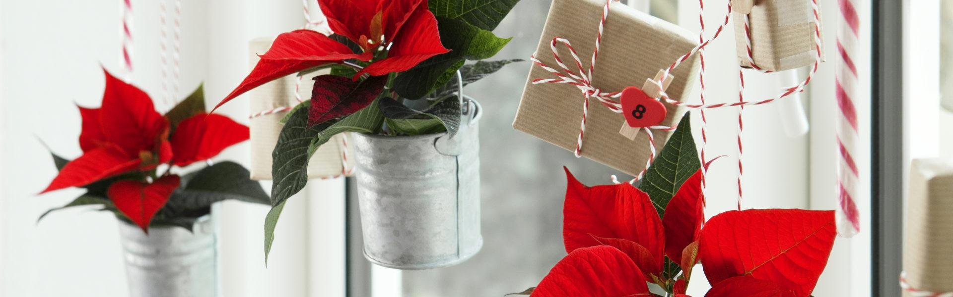 Julekalender på din egen måte