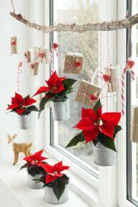 Adventskalender som hyggelig vindusdekorasjon