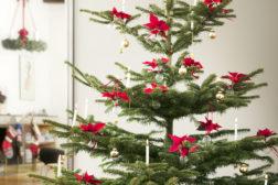Juletre pyntet med julegaver