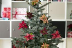 Juletre for små boliger