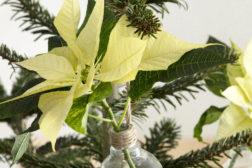 Små vaser på juletreet lar deg pynte med julestjerner
