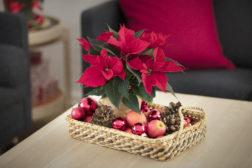 En enkel kurv, dekorasjoner og en julestjerne