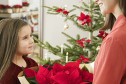 Julestjerne er den fineste julegaven