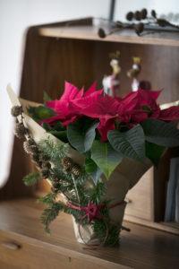 Festlig blomstrende julegave