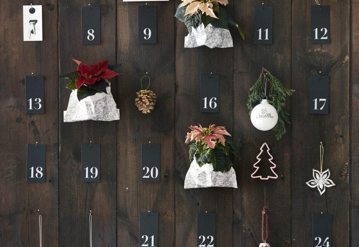 Adventskalender som blomstrer i hele desember