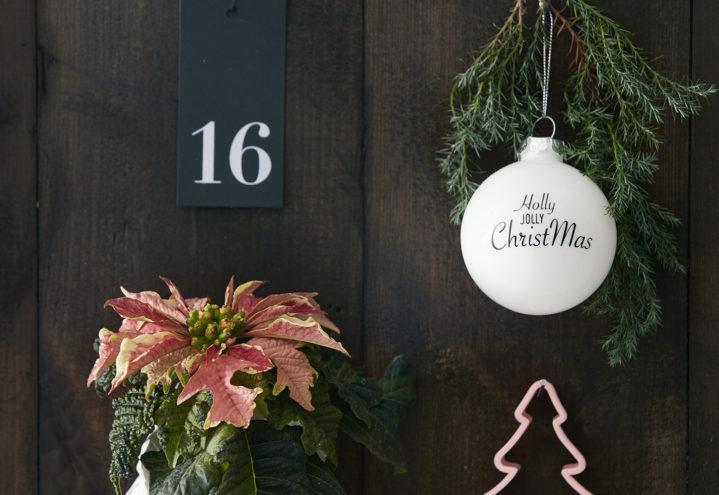 Julekalender med blomstrende liv