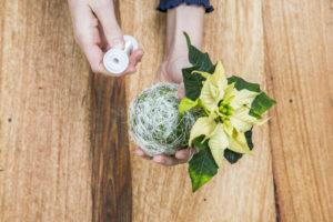 Lag en juledekorasjon av en minijulestjerne