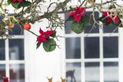Alternativt juletre med julegren i stuen