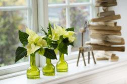 Enkel julestemning i vaser