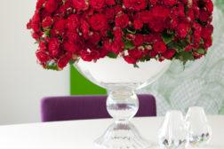 Juleglede i alle hjem med begonia!