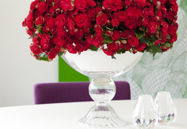 Samle mange begonia sammen og få en overdådig oppsats
