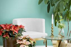 Elegant og stilrent også med julestjerner i frodige hjem
