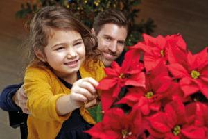 Liten jente er nysgjerrig på julestjernen - er den virkelig ekte?