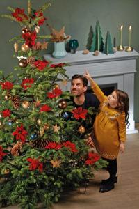 Juletre med julestjerner, en liten jente viser pappa stjernene