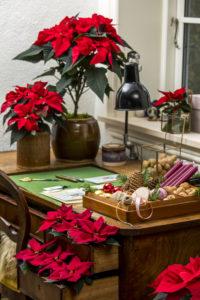 Pynt der du kan - skuffer og gamle krukker er supre til juledekorasjoner!