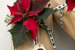 Kalenderpakke, fint dekorert med en snittet julestjerne