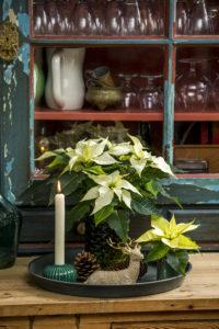 Et dekorert fat er lett å flytte på etter hvor i huset du ønsker å dekorere