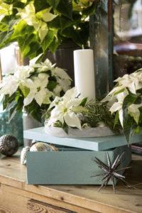 Enkelt og vakkert med julestjerner i hvitt
